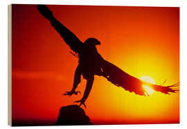 Wood print  A golden eagle flies at dawn - Dave Welling