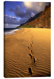 Canvas print  Footprints on Kalalau Beach - Douglas Peebles