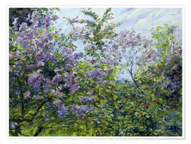 Premium poster Blossoming lilac. About 1921