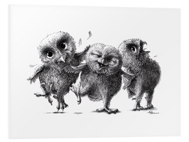 Foam board print  Three crazy owls - Stefan Kahlhammer