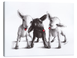 Canvas print  naughty sheep - Stefan Kahlhammer