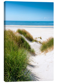 Canvas print  North sea dunes - Reiner Würz