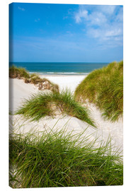 Canvas print  Seascape with dunes and beach grass - Reiner Würz