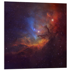 Foam board print  The Tulip Nebula in Cygnus - Robert Gendler
