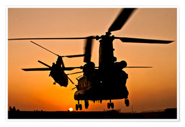 Premium poster Two Royal Air Force CH-47 Chinooks