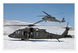 Premium poster Two US Army UH-60 Black Hawk helicopter
