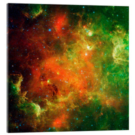 Acrylic print  Clusters of young stars