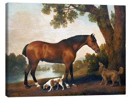 Canvas print  Horse and two dogs - George Stubbs