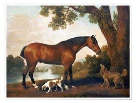 Premium poster Horse and two dogs