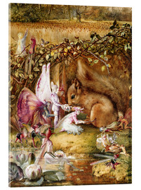 Acrylic print  The injured squirrel - John Anster Fitzgerald