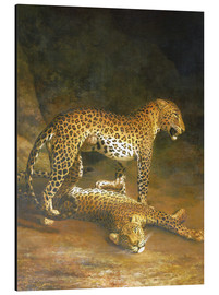 Aluminium print  Two Leopards lying in the Exeter Exchange - Jacques Laurent Agasse