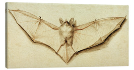 Canvas print  Bat with spread wings - Hans Holbein d.J.