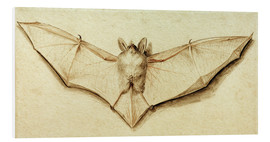 Foam board print  Bat with spread wings - Hans Holbein d.J.