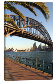 Canvas print  Sydney Harbor Bridge - David Wall