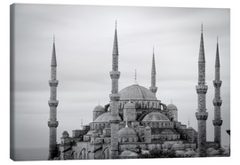 Canvas print  the blue mosque in Istanbul / Turkey - gn fotografie