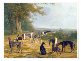 Premium poster  Nine Greyhounds on a landscape - Jacques Laurent Agasse