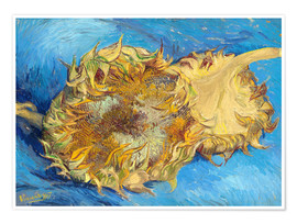 Premium poster  Two sunflowers - Vincent van Gogh