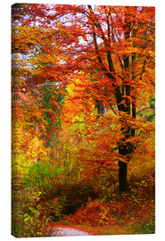 Canvas print  Autumn - Falko Follert