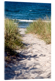 Acrylic print  White dune on the beach of the island of Rügen - CAPTAIN SILVA