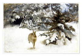 Premium poster  A hare in the snow - Bruno Andreas Liljefors