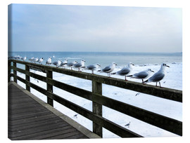 Canvas print  Seagull line-up, Baltic Sea - Städtecollagen