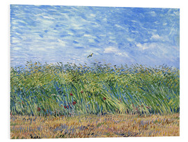 Foam board print  Corn field with poppies and partridge - Vincent van Gogh