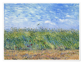Premium poster  Corn field with poppies and partridge - Vincent van Gogh