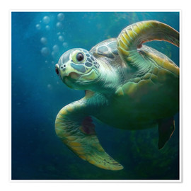 Premium poster  Bubbles, the cute sea turtle - Photoplace Creative