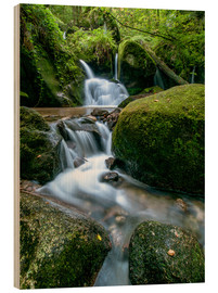 Wood print  Little Waterfall in Black Forest - Andreas Wonisch