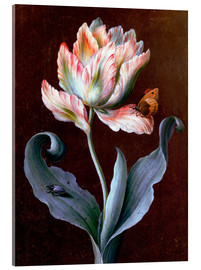 Acrylic print  Parrot tulip with butterfly and beetle - Barbara Regina Dietzsch