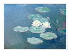 Premium poster Waterlilies, Evening