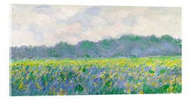 Acrylic print  Field of Yellow Irises in Giverny - Claude Monet