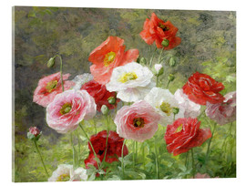 Acrylic print  Cluster of Poppies - Louis Marie Lemaire