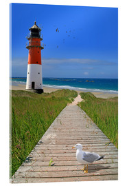 Acrylic print  The road to the lighthouse by the sea - Monika Jüngling