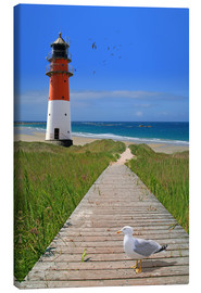 Canvas print  The road to the lighthouse by the sea - Monika Jüngling