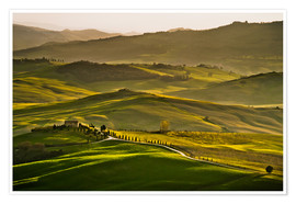 Premium poster Evening light in Tuscany