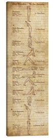 Canvas print  Surya Namaskara the sun salutation(vertical) yoga poster - Sharma Satyakam