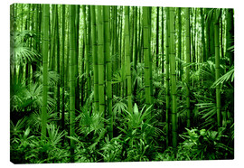 Canvas print  bamboo forest - GUGIGEI