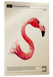 Acrylic print  fig3 Polygonflamingo Poster - Labelizer