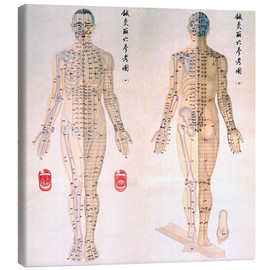 Canvas print  Acupuncture map of the male body