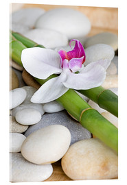Acrylic print  Bamboo and orchid II - Andrea Haase Foto