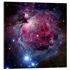 Acrylic print  The Orion Nebula - Robert Gendler
