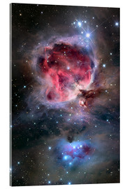 Acrylic print  The Orion Nebula - Roth Ritter