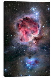 Canvas print  The Orion Nebula - Roth Ritter