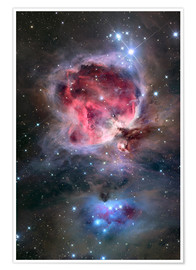Premium poster  The Orion Nebula - Roth Ritter