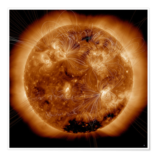 Premium poster Magnetic field lines on the Sun