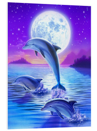Foam board print  Dolphins at midnight - Robin Koni