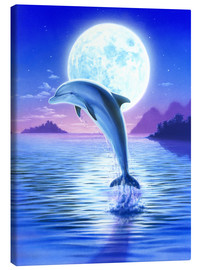 Canvas print  Day of the dolphin - midnight - Robin Koni
