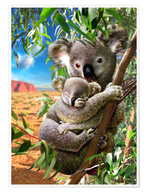 Premium poster  Koala and cub - Adrian Chesterman