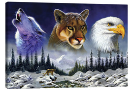 Canvas print  American wildlife - Chris Hiett
